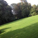 Création et entretien de pelouses - Lbo Services